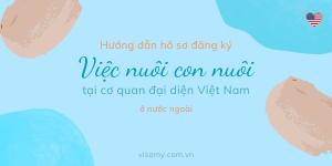 Hướng Dẫn Hồ Sơ Đăng Ký Việc Nuôi Con Nuôi Tại Cơ Quan Đại Diện Việt Nam Ở Nước Ngoài