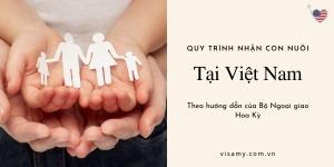 Quy Trình Nhận Con Nuôi Tại Việt Nam Theo Hướng Dẫn Của Bộ Ngoại Giao Hoa Kỳ
